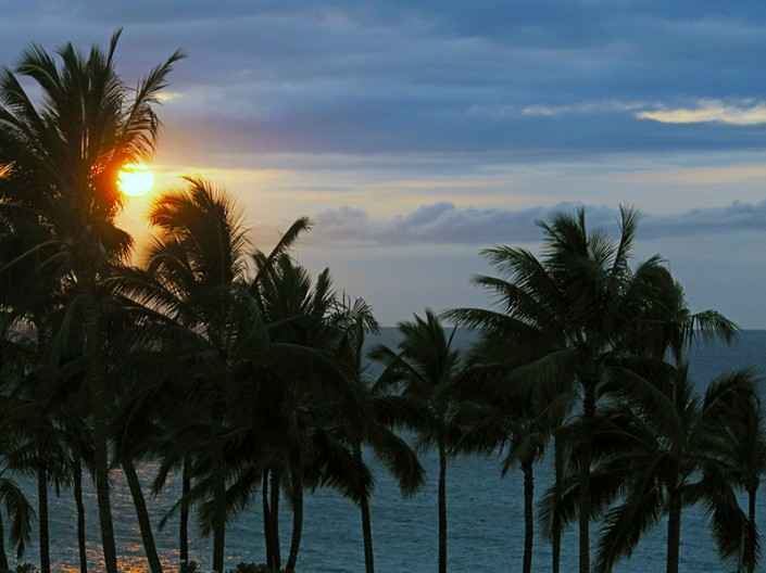 A view of the setting sun through palm trees on Maui, Hawaii