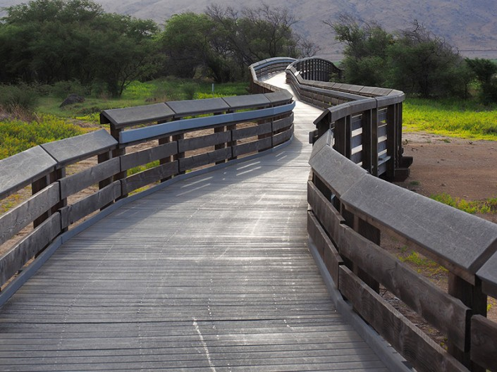 A view of the birdwatching boardwalk at the Kealia Coastal Boardwalk in Maui