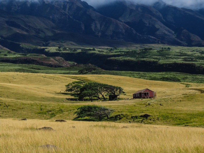 A view of an old ranch house on the southern slopes of Haleakala on Maui, Hawaii