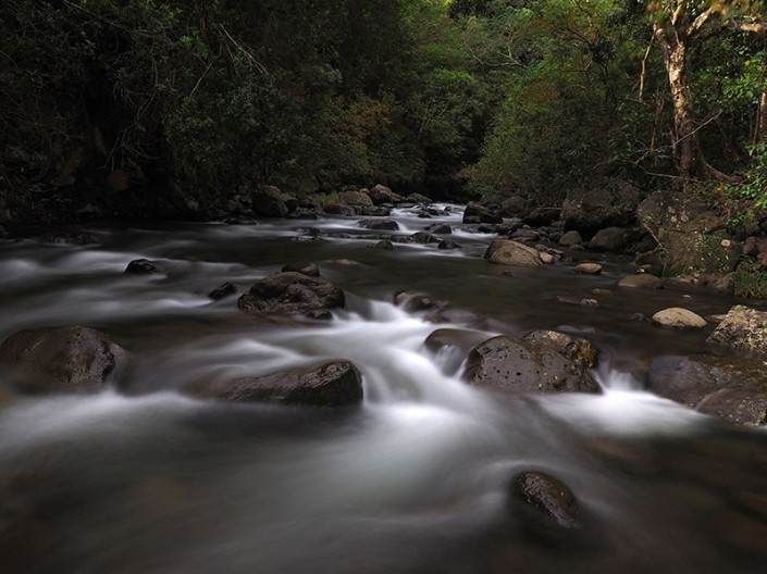 A view of Iao Stream on Good Friday morning in the year 2014