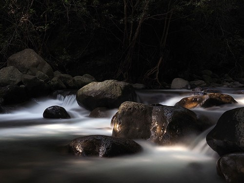 Morning Light at Iao Stream