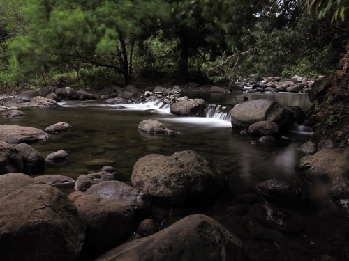 a delightful view of Maui's Iao Stream in Iao Valley State Park