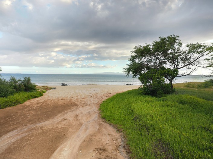 a view of Kealia Pond National Wildlife Refuge beach area in Kihei, Maui
