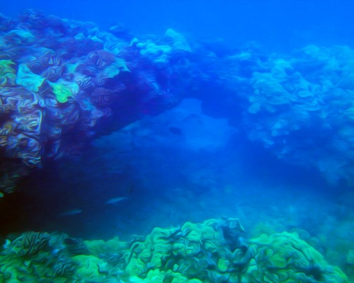A beautiful underwater sea arch in the blue waters of Maui, Hawaii