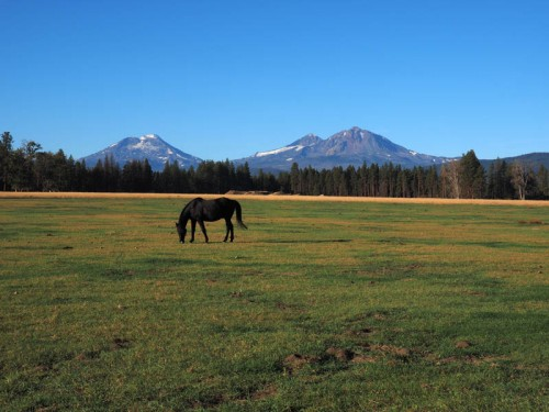 a view of the three sisters with horse in meadow