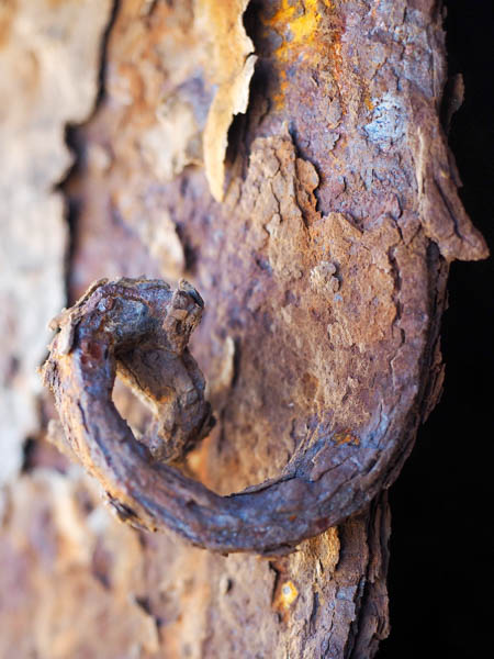 the art of rust showing gnarled up metal