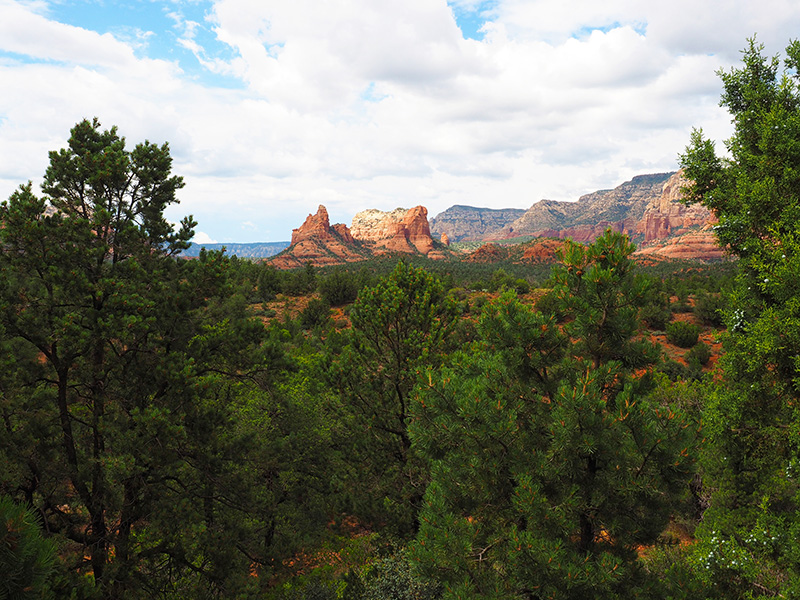 red rock landscapes of sedona arizona